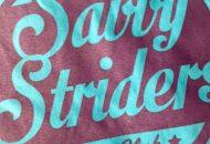 Savvy Striders